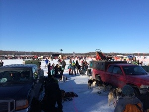 Iditarod Post Start Willow Alaska